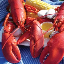 Massachusetts Celebrates Lobster Day at the State House on October 8