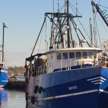Seaport Economic Council Announces $6.6 Million in Grants to Support Massachusetts Coastal Communities